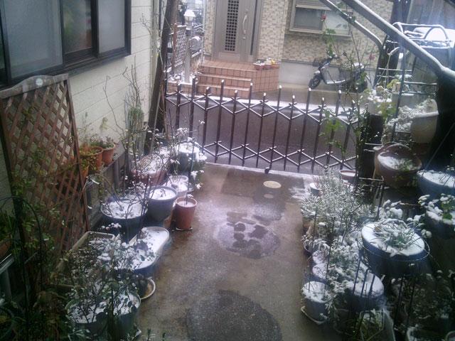 2014-02-08-snowgrage-befor