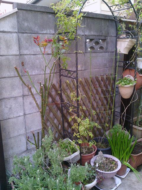 2013-03-16_garage-roze