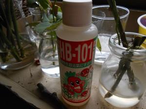 培養液 HB-101